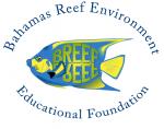 www.breef.org